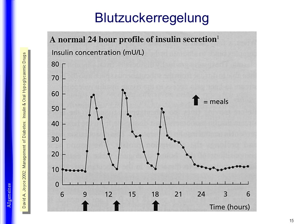 15 Blutzuckerregelung Allgemeines David A. Joyce 2002: Management of Diabetes: Insulin & Oral Hypoglycaemic Drugs