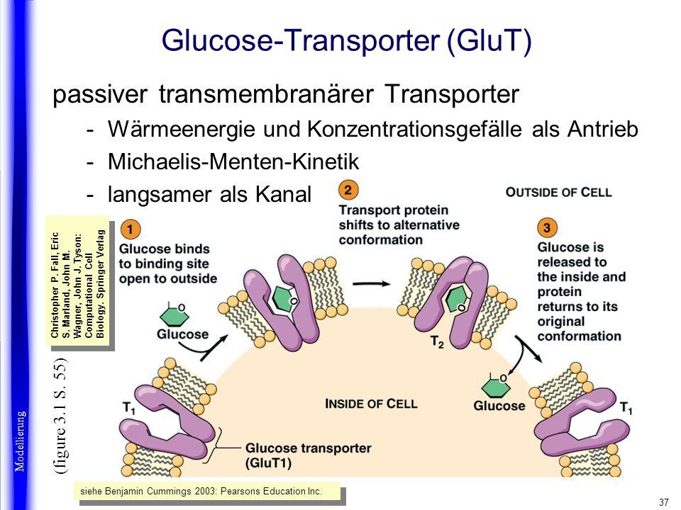 37 Glucose-Transporter (GluT) passiver transmembranärer Transporter -Wärmeenergie und Konzentrationsgefälle als Antrieb -Michaelis-Menten-Kinetik -lan
