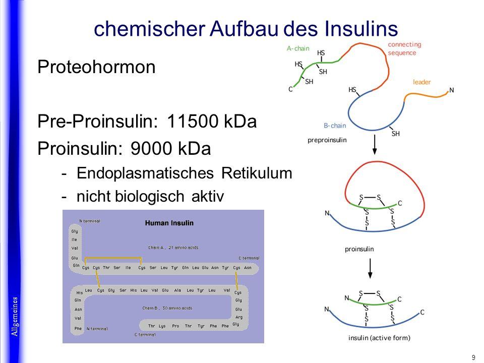 9 Proteohormon Pre-Proinsulin: 11500 kDa Proinsulin: 9000 kDa -Endoplasmatisches Retikulum -nicht biologisch aktiv chemischer Aufbau des Insulins Allg