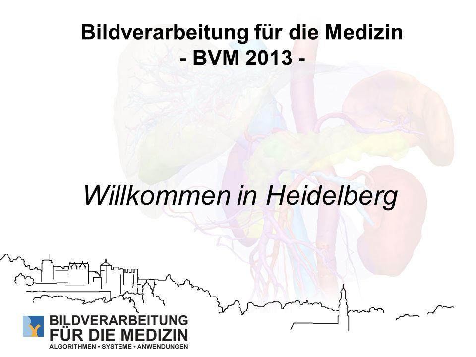Bildverarbeitung für die Medizin - BVM 2013 - Willkommen in Heidelberg