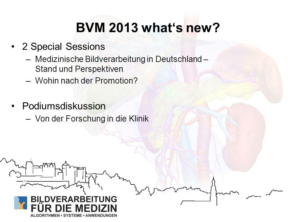 BVM 2013 in Zahlen 40 Vorträge, 19 Poster und 2 Softwaredemos 3 Tutorien, 2 Führungen 2 eingeladene Vorträge Prof.
