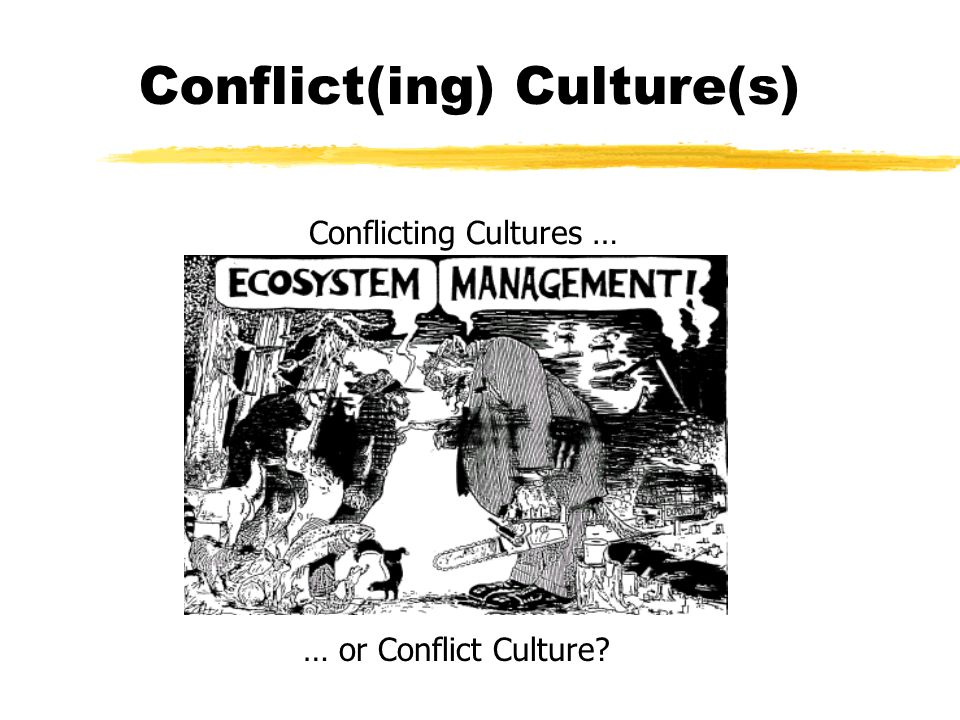 Conflict(ing) Culture(s) Conflicting Cultures … … or Conflict Culture?