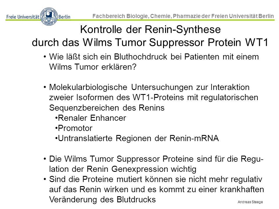 Fachbereich Biologie, Chemie, Pharmazie der Freien Universität Berlin Wie läßt sich ein Bluthochdruck bei Patienten mit einem Wilms Tumor erklären? Mo