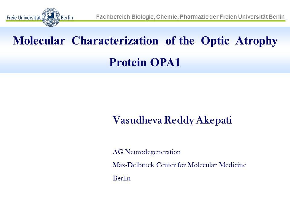 Fachbereich Biologie, Chemie, Pharmazie der Freien Universität Berlin Molecular Characterization of the Optic Atrophy Protein OPA1 Vasudheva Reddy Ake