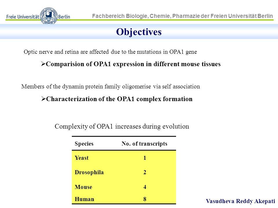 Fachbereich Biologie, Chemie, Pharmazie der Freien Universität Berlin OPA1 protein is processed by MPP enzyme Vasudheva Reddy Akepati 285 kDa 184 kDa 285 kDa