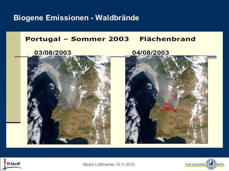 Modul Luftchemie, 15.11.2010 Biogene Emissionen - Waldbrände