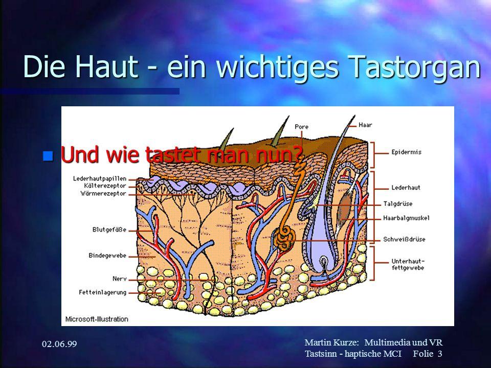 Martin Kurze:Multimedia und VR Tastsinn - haptische MCI Folie 3 02.06.99 Die Haut - ein wichtiges Tastorgan n Und wie tastet man nun?