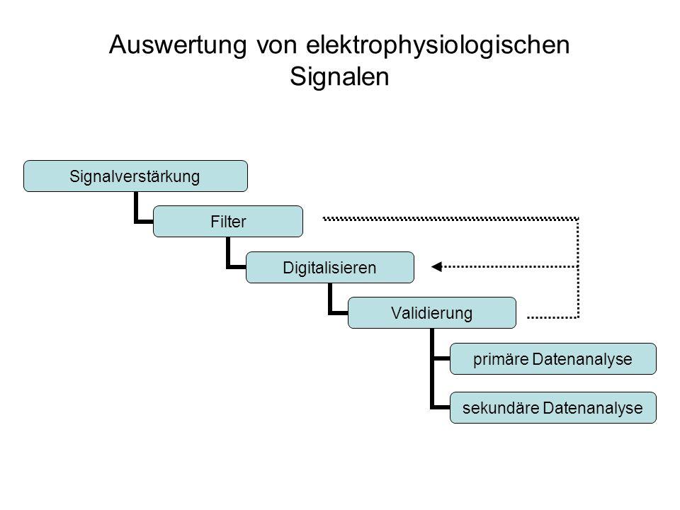 Auswertung von elektrophysiologischen Signalen