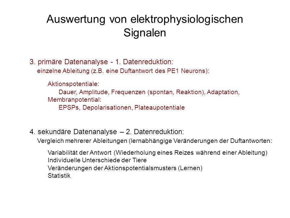 Auswertung von elektrophysiologischen Signalen 3. primäre Datenanalyse - 1. Datenreduktion: einzelne Ableitung (z.B. eine Duftantwort des PE1 Neurons)