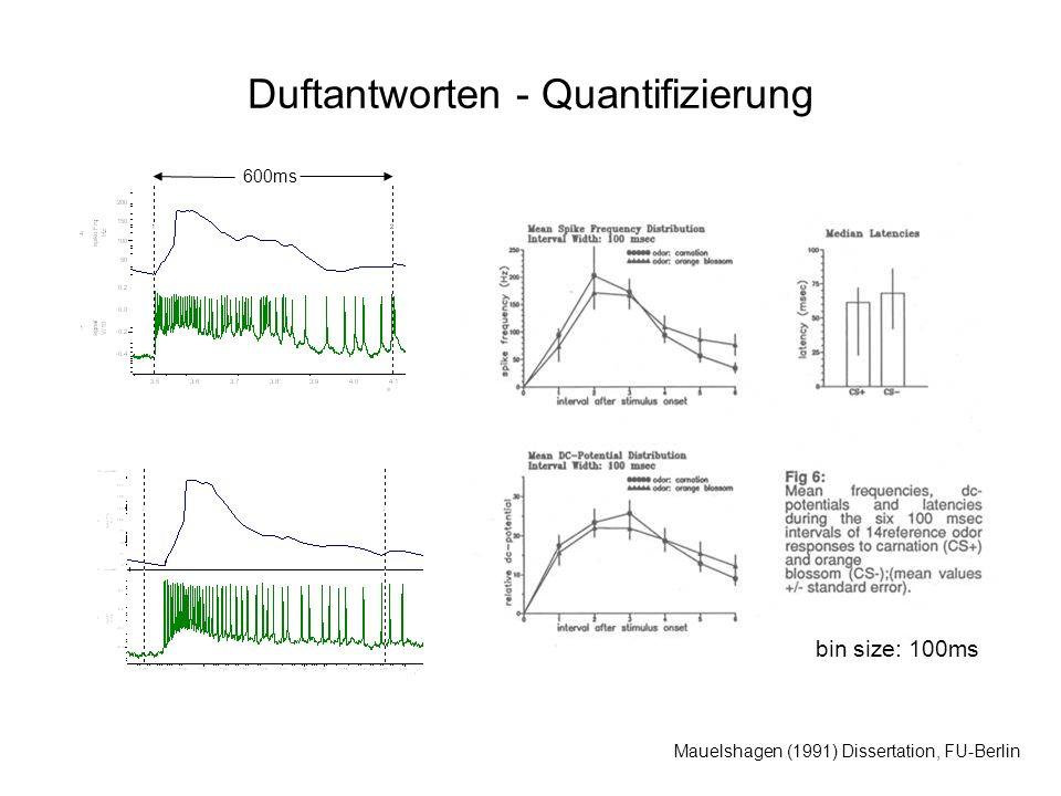 Duftantworten - Quantifizierung Mauelshagen (1991) Dissertation, FU-Berlin bin size: 100ms 600ms