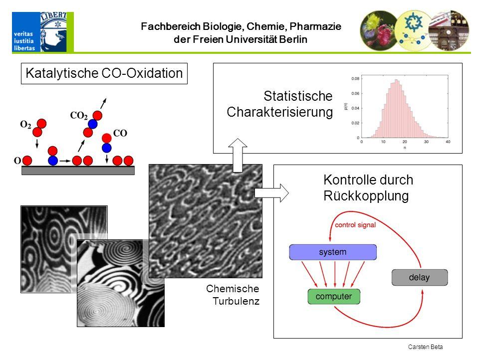 Fachbereich Biologie, Chemie, Pharmazie der Freien Universität Berlin Carsten Beta Statistische Charakterisierung Kontrolle durch Rückkopplung Chemische Turbulenz Katalytische CO-Oxidation