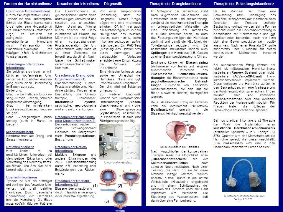 Drang- oder Urgeinkontinenz (Reizblase, hyperaktive Blase) Typisch ist eine Überempfind- lichkeit der Blase (sensorische Urge) oder eine Hyperaktivitä