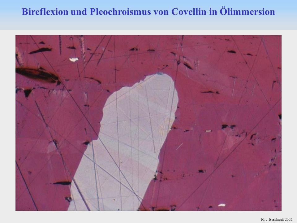 H.-J. Bernhardt 2002 Bireflexion und Pleochroismus von Covellin in Ölimmersion