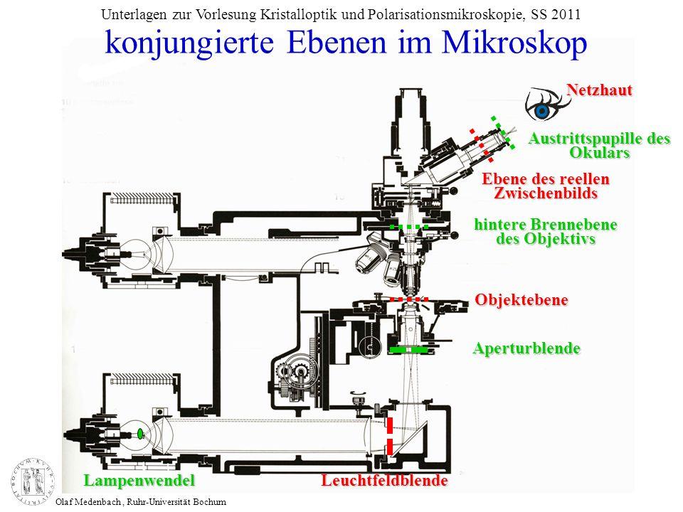 Olaf Medenbach, Ruhr-Universität Bochum Unterlagen zur Vorlesung Kristalloptik und Polarisationsmikroskopie, SS 2011 konjungierte Ebenen im Mikroskop