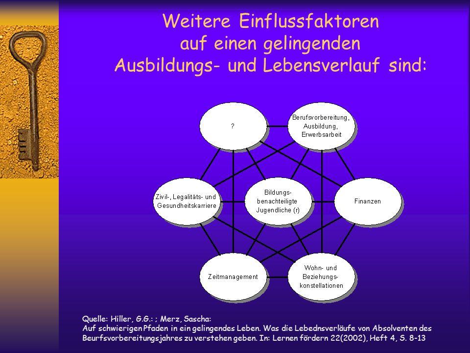 Weitere Einflussfaktoren auf einen gelingenden Ausbildungs- und Lebensverlauf sind: Quelle: Hiller, G.G.: ; Merz, Sascha: Auf schwierigen Pfaden in ei