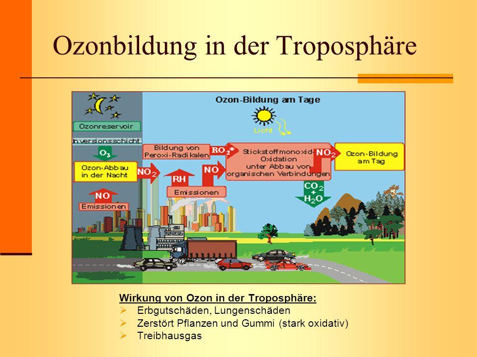 Ozonbildung in der Troposphäre Wirkung von Ozon in der Troposphäre: Erbgutschäden, Lungenschäden Zerstört Pflanzen und Gummi (stark oxidativ) Treibhau