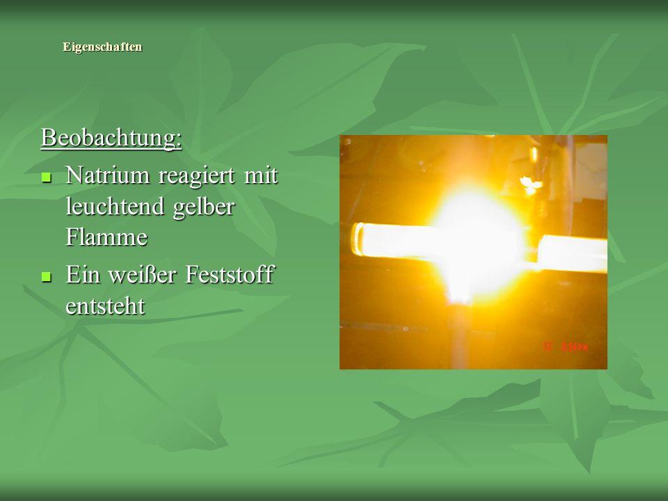 Eigenschaften Beobachtung: Natrium reagiert mit leuchtend gelber Flamme Natrium reagiert mit leuchtend gelber Flamme Ein weißer Feststoff entsteht Ein