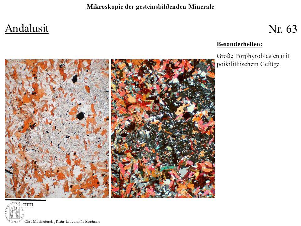 Mikroskopie der gesteinsbildenden Minerale Olaf Medenbach, Ruhr-Universität Bochum Andalusit Nr. 63 1 mm Besonderheiten: Große Porphyroblasten mit poi