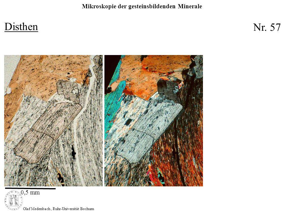 Mikroskopie der gesteinsbildenden Minerale Olaf Medenbach, Ruhr-Universität Bochum Disthen 0,5 mm Nr. 57