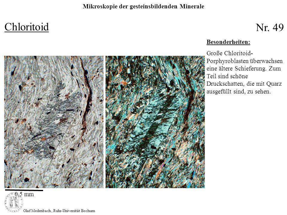 Mikroskopie der gesteinsbildenden Minerale Olaf Medenbach, Ruhr-Universität Bochum Chloritoid Nr. 49 0,5 mm Besonderheiten: Große Chloritoid- Porphyro