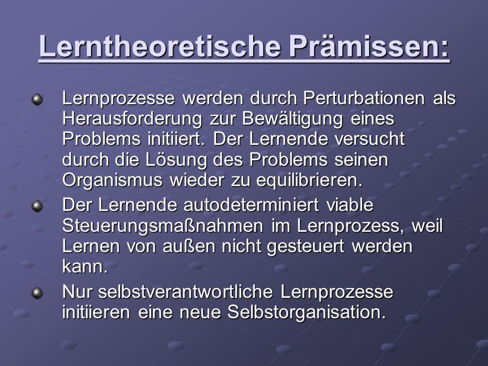 Lerntheoretische Prämissen: Lernprozesse werden durch Perturbationen als Herausforderung zur Bewältigung eines Problems initiiert. Der Lernende versuc