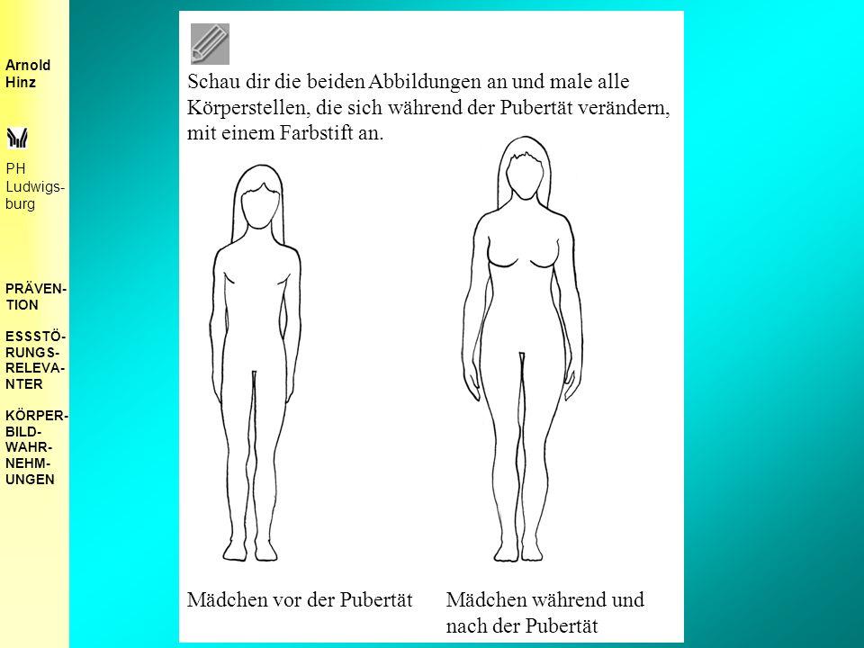 Schau dir die beiden Abbildungen an und male alle Körperstellen, die sich während der Pubertät verändern, mit einem Farbstift an.