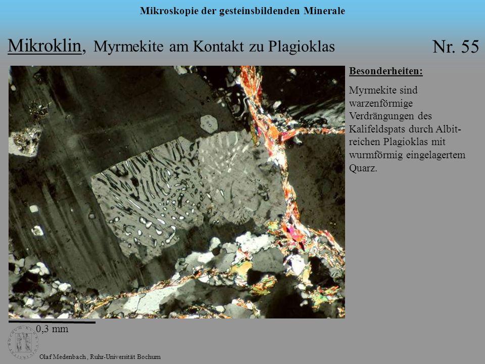 Olaf Medenbach, Ruhr-Universität Bochum Mikroskopie der gesteinsbildenden Minerale Mikroklin, Myrmekite am Kontakt zu Plagioklas Nr. 55 Besonderheiten
