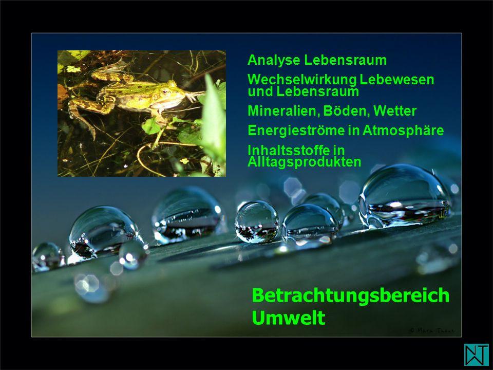 Analyse Lebensraum Wechselwirkung Lebewesen und Lebensraum Mineralien, Böden, Wetter Energieströme in Atmosphäre Inhaltsstoffe in Alltagsprodukten Bet
