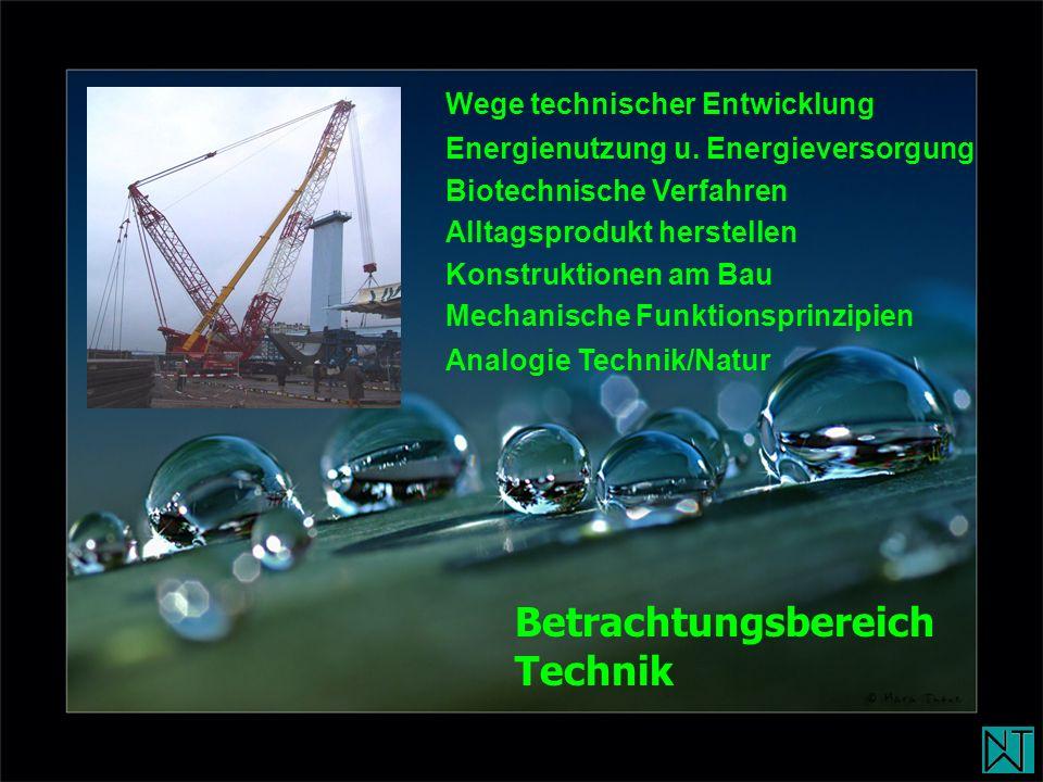 Wege technischer Entwicklung Energienutzung u. Energieversorgung Biotechnische Verfahren Alltagsprodukt herstellen Konstruktionen am Bau Mechanische F