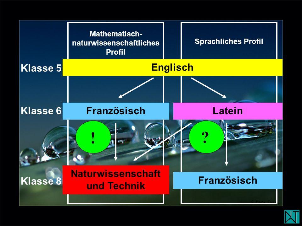 Englisch Latein Klasse 5 Klasse 6 Französisch Klasse 8 Naturwissenschaft und Technik Französisch Mathematisch- naturwissenschaftliches Profil Sprachli