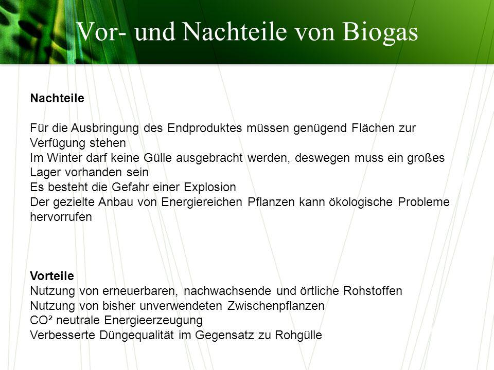 Bohlschule versorgt mit Biogas Berechnungen Aus jedem m³ Biogas kann man2 kW/h Strom und 6 kW/h Wärme erzeugen.