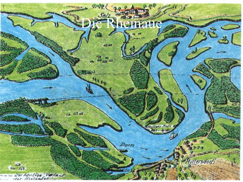 Grundkurs Erdkunde 12.2 Braun2 Die Rheinaue