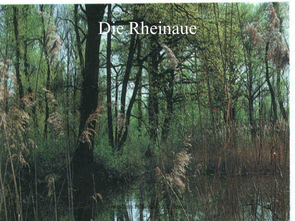 Grundkurs Erdkunde 12.2 Braun5 Die Rheinaue