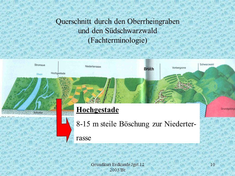Grundkurs Erdkunde Jgst.12 2003/Br 10 Querschnitt durch den Oberrheingraben und den Südschwarzwald (Fachterminologie) Hochgestade 8-15 m steile Böschu
