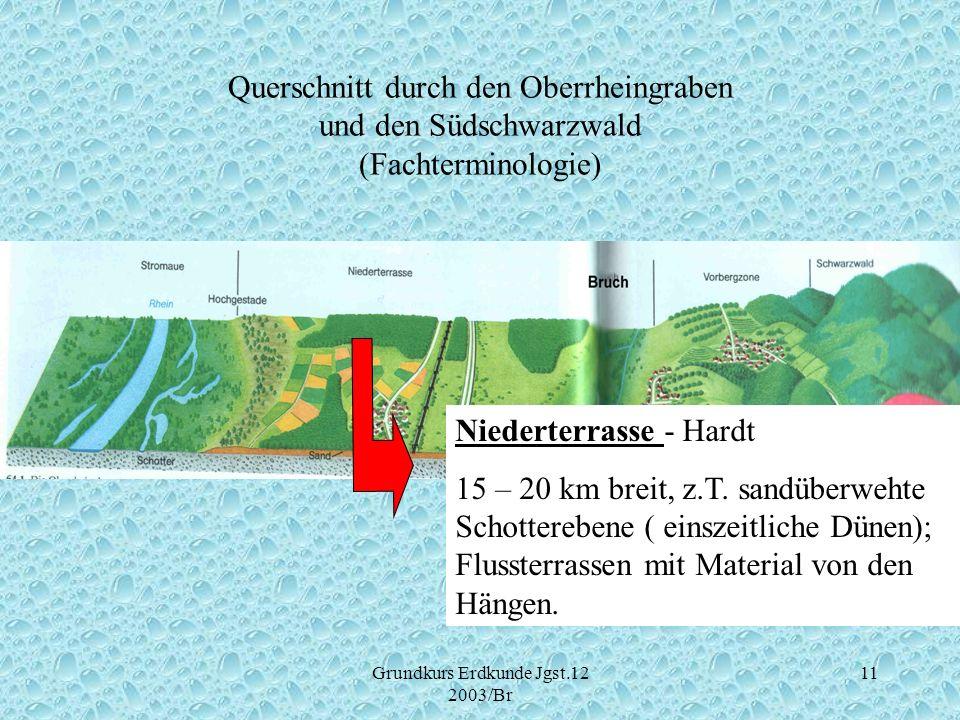 Grundkurs Erdkunde Jgst.12 2003/Br 11 Querschnitt durch den Oberrheingraben und den Südschwarzwald (Fachterminologie) Niederterrasse - Hardt 15 – 20 k