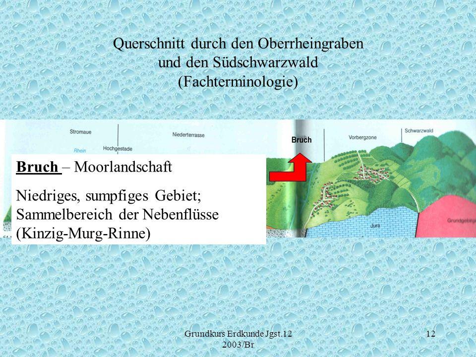 Grundkurs Erdkunde Jgst.12 2003/Br 12 Querschnitt durch den Oberrheingraben und den Südschwarzwald (Fachterminologie) Bruch – Moorlandschaft Niedriges