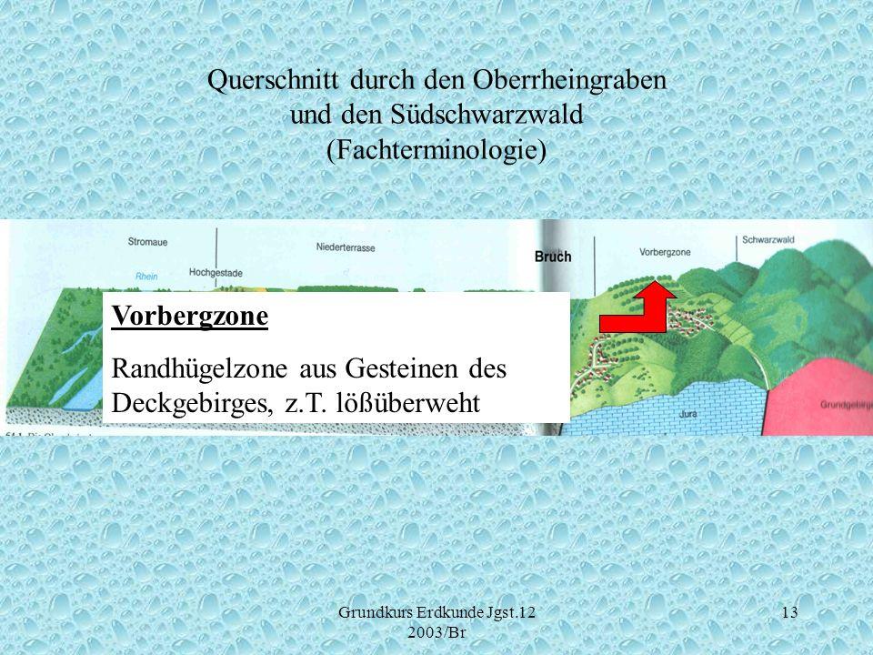 Grundkurs Erdkunde Jgst.12 2003/Br 13 Querschnitt durch den Oberrheingraben und den Südschwarzwald (Fachterminologie) Vorbergzone Randhügelzone aus Ge