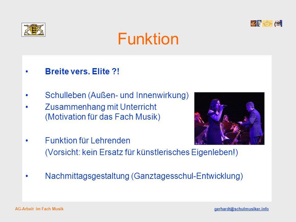 Funktion Breite vers. Elite ?! Schulleben (Außen- und Innenwirkung) Zusammenhang mit Unterricht (Motivation für das Fach Musik) Funktion für Lehrenden