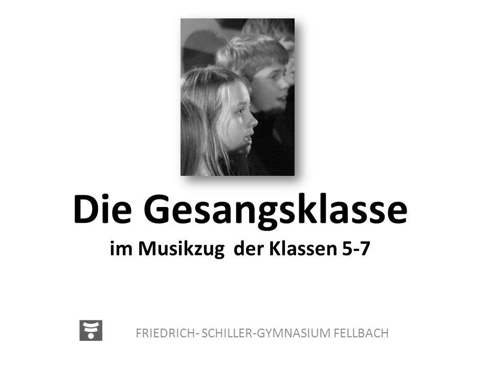 Die Gesangsklasse im Musikzug der Klassen 5-7 FRIEDRICH- SCHILLER-GYMNASIUM FELLBACH