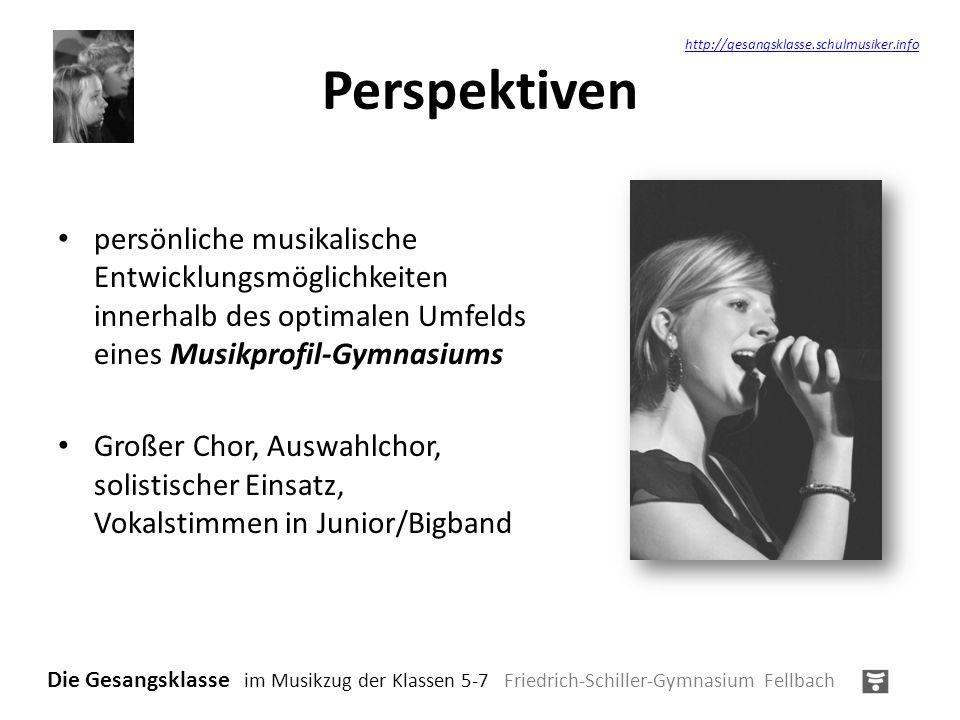 Perspektiven persönliche musikalische Entwicklungsmöglichkeiten innerhalb des optimalen Umfelds eines Musikprofil-Gymnasiums Großer Chor, Auswahlchor,