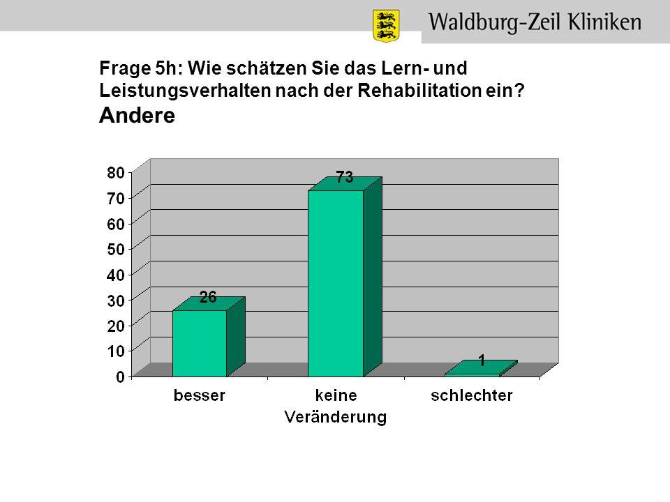 Frage 5h: Wie schätzen Sie das Lern- und Leistungsverhalten nach der Rehabilitation ein? Andere