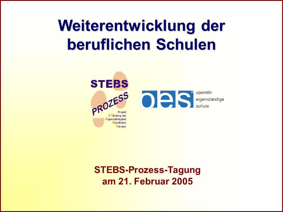 Referat Grundsatzfragen beruflicher Schulen und Qualitätssicherung R STEBS-Prozess-Tagung am 21. Februar 2005 Weiterentwicklung der beruflichen Schule