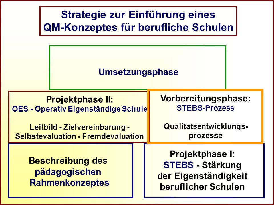 Referat Grundsatzfragen beruflicher Schulen und Qualitätssicherung R Strategie zur Einführung eines QM-Konzeptes für berufliche Schulen Umsetzungsphas