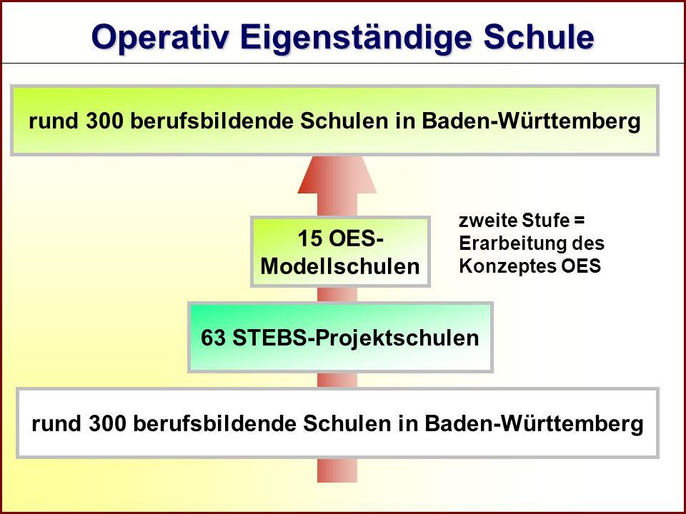 Referat Grundsatzfragen beruflicher Schulen und Qualitätssicherung R zweite Stufe = Erarbeitung des Konzeptes OES rund 300 berufsbildende Schulen in B