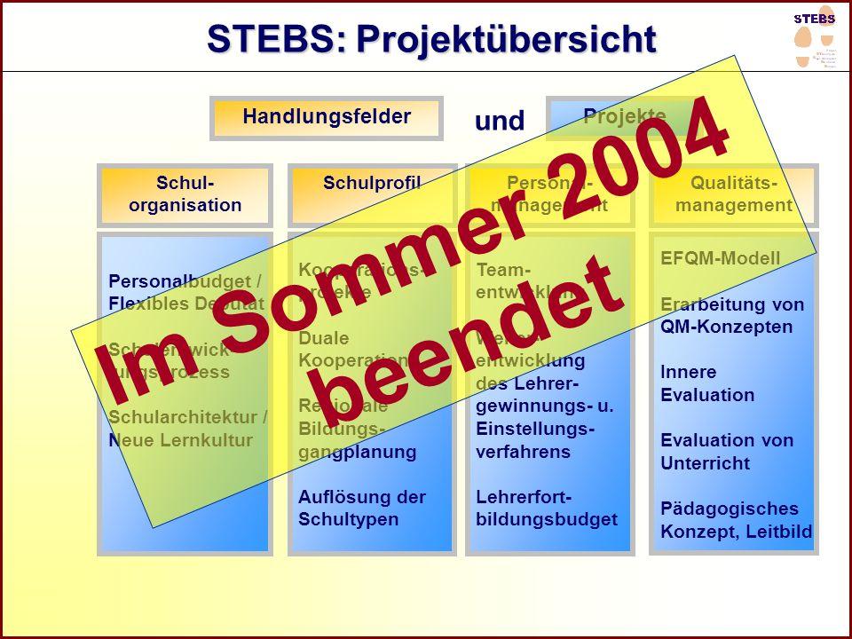 Referat Grundsatzfragen beruflicher Schulen und Qualitätssicherung R STEBS: Projektübersicht Personal- management Qualitäts- management Schul- organis