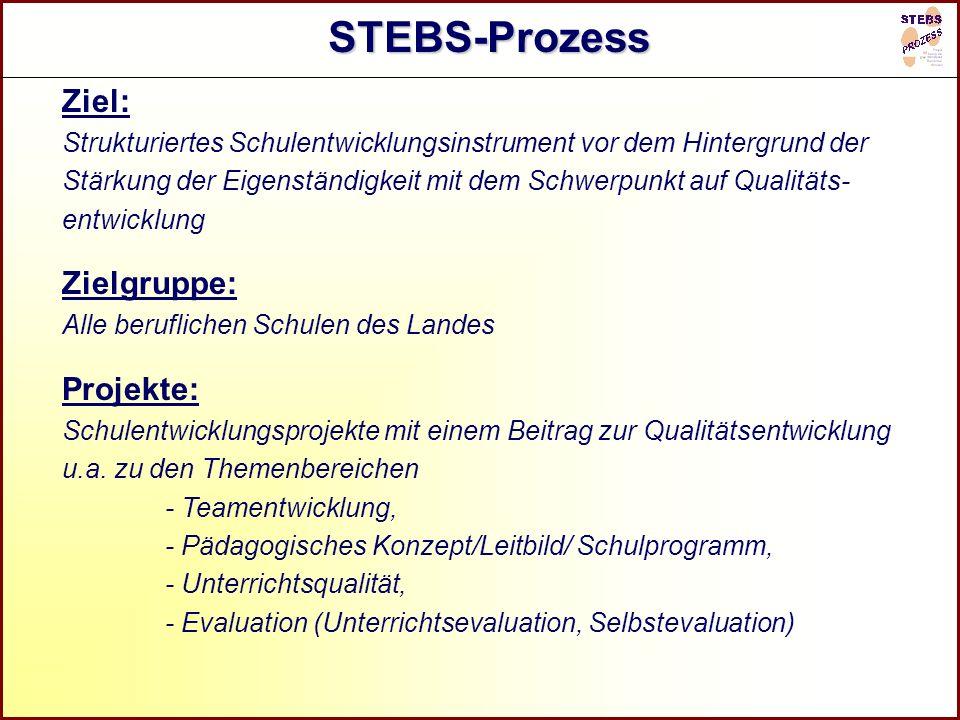 R STEBS-Prozess Ziel: Strukturiertes Schulentwicklungsinstrument vor dem Hintergrund der Stärkung der Eigenständigkeit mit dem Schwerpunkt auf Qualitä