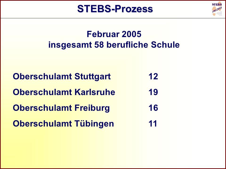 Referat Grundsatzfragen beruflicher Schulen und Qualitätssicherung R STEBS-Prozess Februar 2005 insgesamt 58 berufliche Schule Oberschulamt Stuttgart1