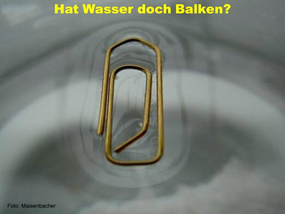 Autor: Peter Maisenbacher Hat Wasser doch Balken?