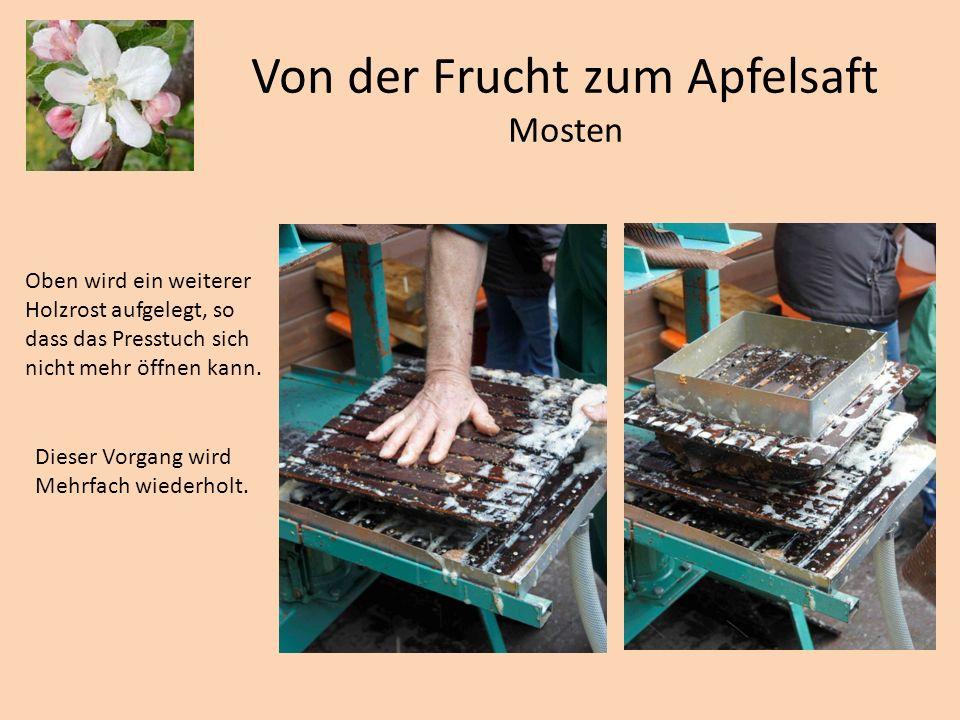 Von der Frucht zum Apfelsaft Mosten Oben wird ein weiterer Holzrost aufgelegt, so dass das Presstuch sich nicht mehr öffnen kann. Dieser Vorgang wird