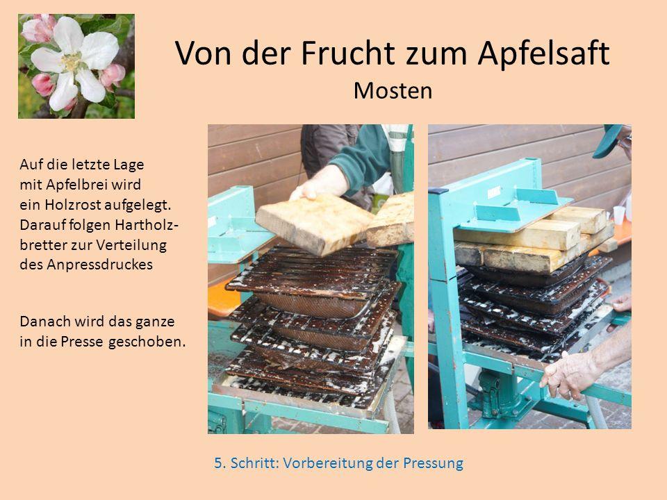 Auf die letzte Lage mit Apfelbrei wird ein Holzrost aufgelegt. Darauf folgen Hartholz- bretter zur Verteilung des Anpressdruckes Danach wird das ganze